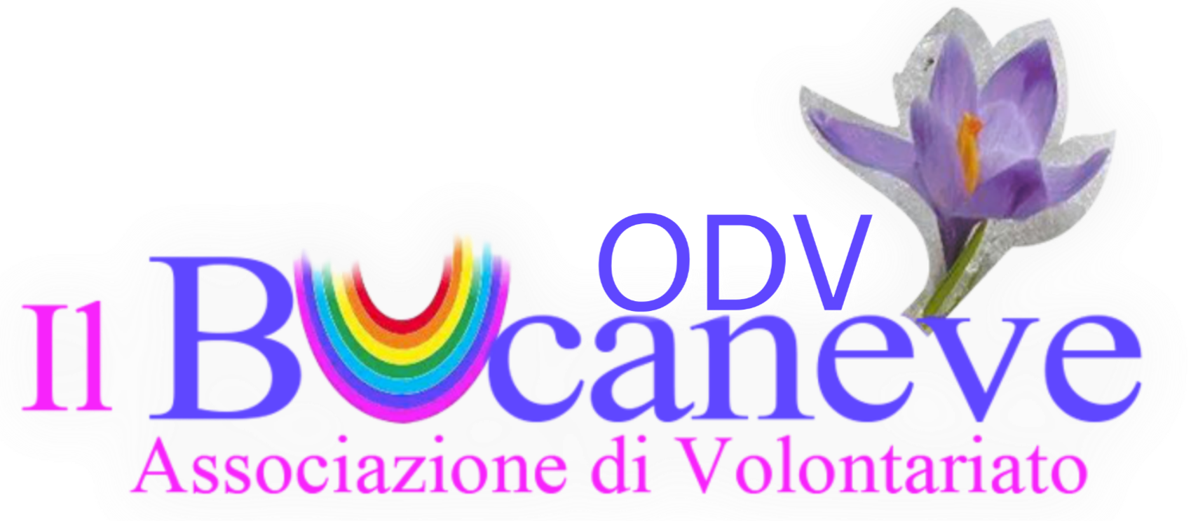 Associazione Volontariato Onlus